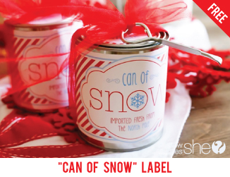 "Free printable ""can of snow"" labels"