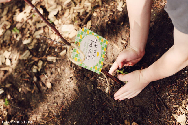 Free printable tree planting kit for kids - great for Earth Day!