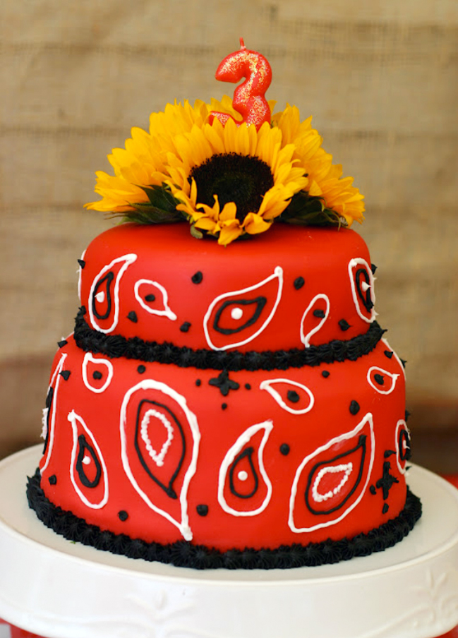 Country western bandanna cake