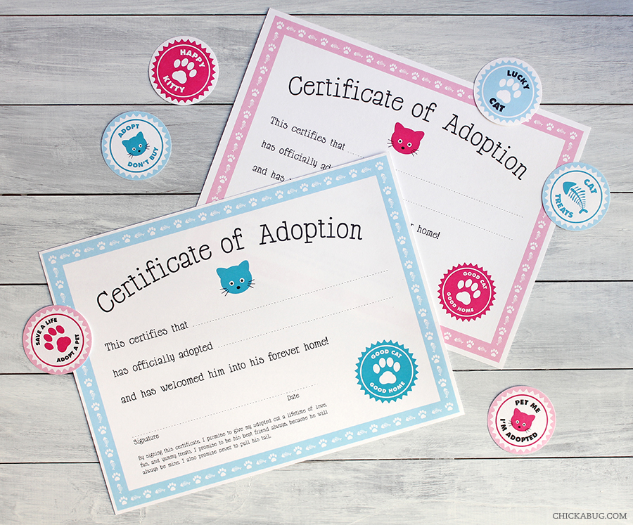 Free printable cat adoption kit chickabug free printable cat adoption kits at chickabug available in pink and blue yadclub Choice Image