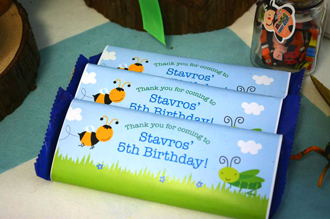 Awesome insect theme birthday party!