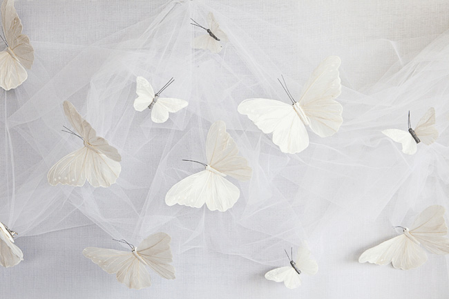 and the white butterflies and tulle are a the perfect backdrop