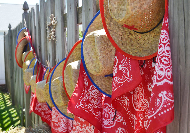 Country western cowgirl party - hats and bandannas