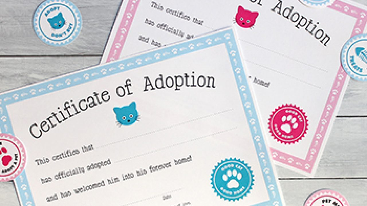 photograph regarding Free Printable Adoption Papers named Totally free printable cat adoption package Chickabug