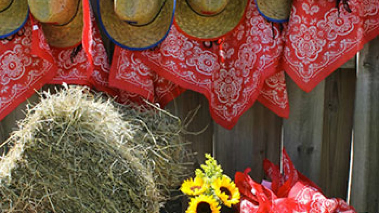 Western Cowboy Cowgirl Red Bandana Handcrafted Bandanna Valance NEW