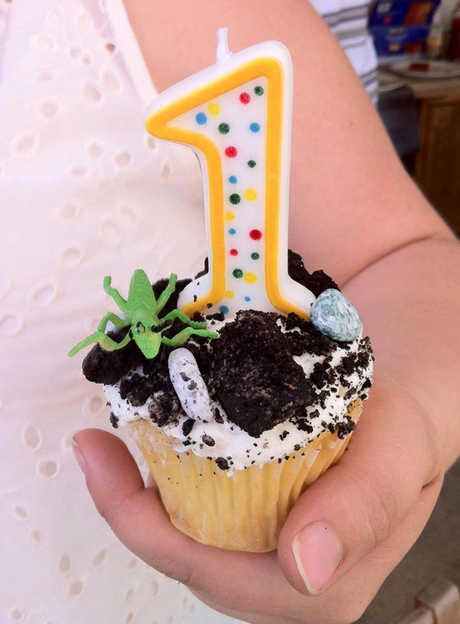 Insect theme party - special smash cupcake