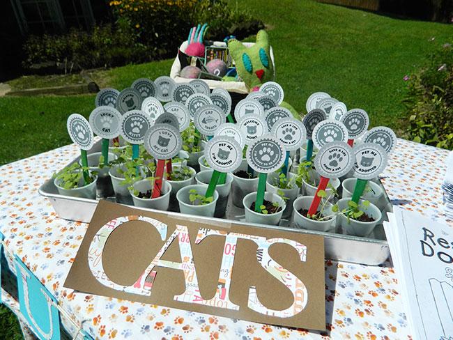 Cat Adoption Party Favors