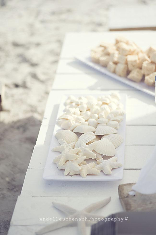 Gorgeous beach birthday party!