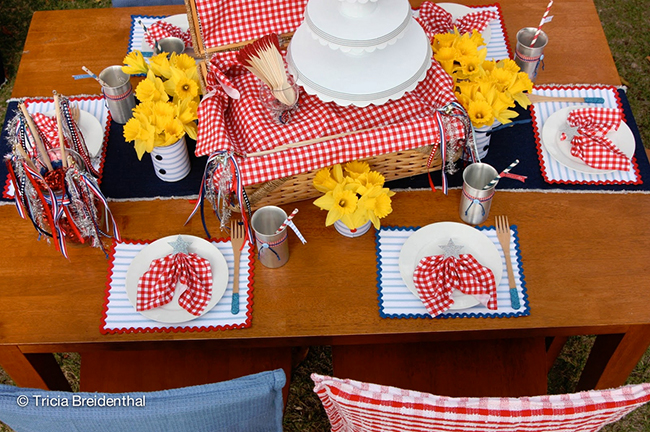 A Patriotic Picnic for the 4th of July, Labor Day, Memorial Day... so fun!
