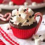 Hot cocoa cupcakes - rich chocolate cupcakes with cocoa toppings and crushed peppermints. Yum!