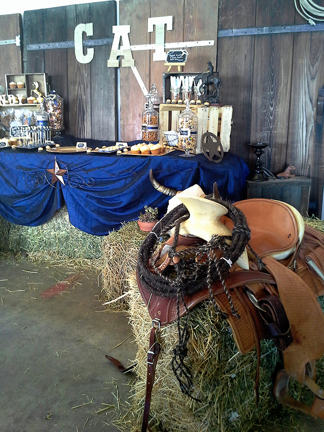 Western theme birthday party