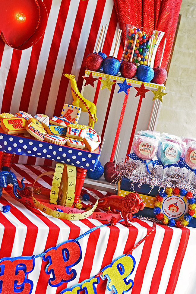 amazing circus birthday party